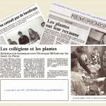 FF Revue de Presse